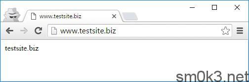 testsite_biz_example