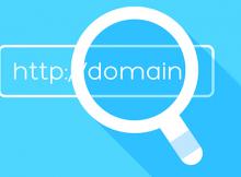 regex domain check